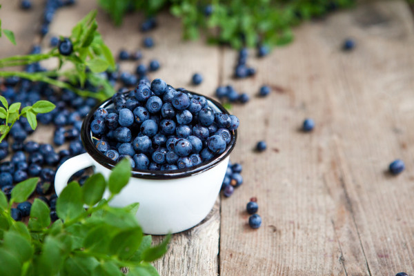 Blueberry health benefits, How to Improve Memory Naturally